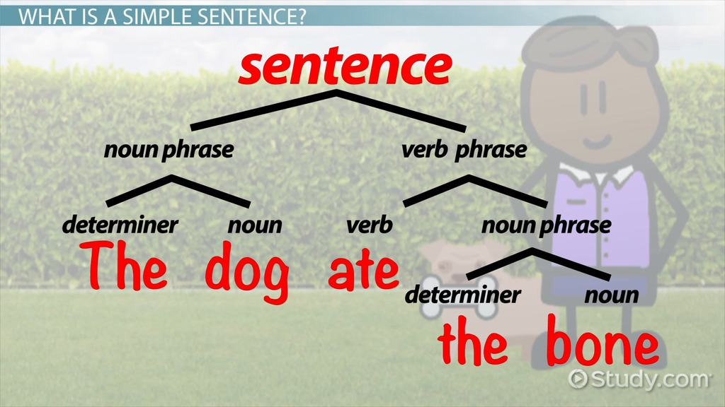 What Is A Compound Sentence  Examples  Definition  Video