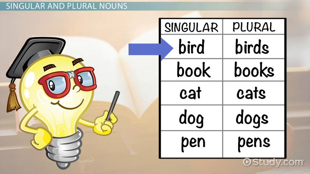 Singular Amp Plural Nouns Lesson For Kids Video Amp Lesson