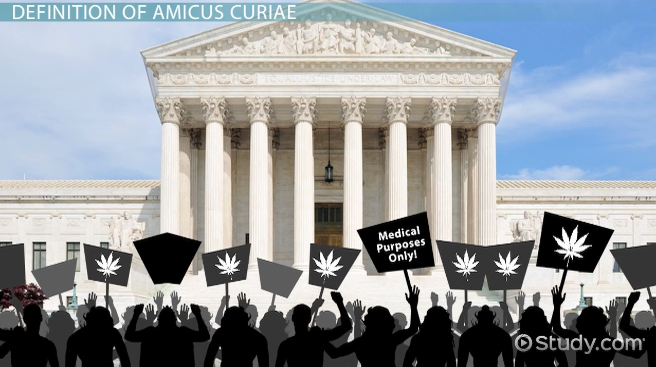 amicus curiae briefs  definition  u0026 example