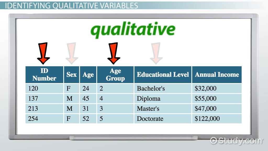 Qualitative Variable In Statistics Definition Examples Video