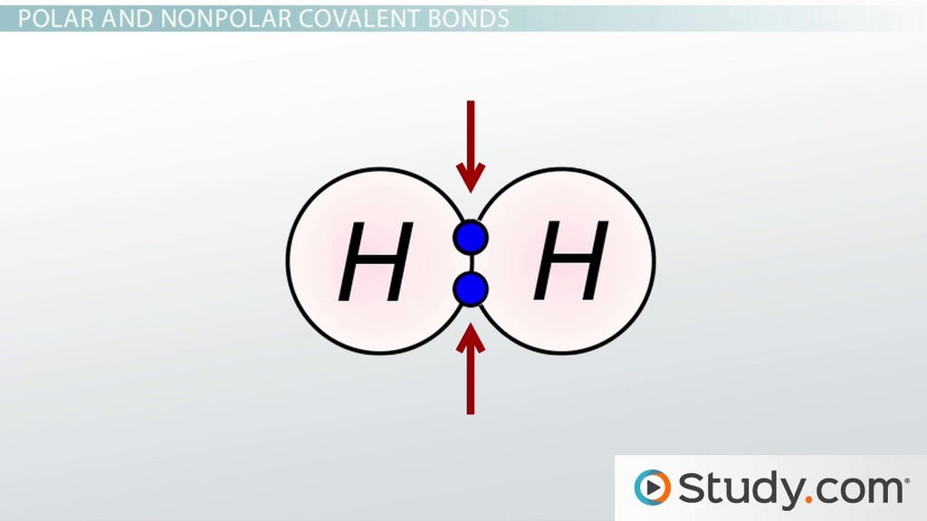 Chemical Bonds Iii Polar Covalent Video Lesson Transcript