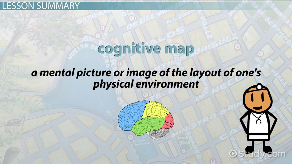 Cognitive Map Definition And Examples Video Amp Lesson Transcript Study Com