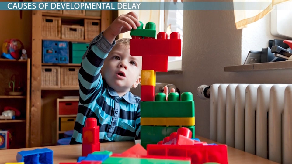 case study on a child with developmental delays Purpose: this case study focused on the care of a child with global developmental delay data sources: data were obtained through the author's clinical practice in.