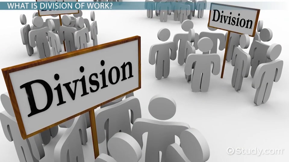 division of work in management definition explanation video