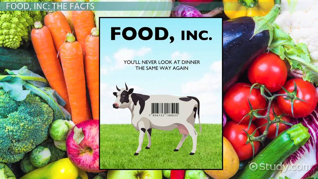 food inc summary facts video lesson transcript com