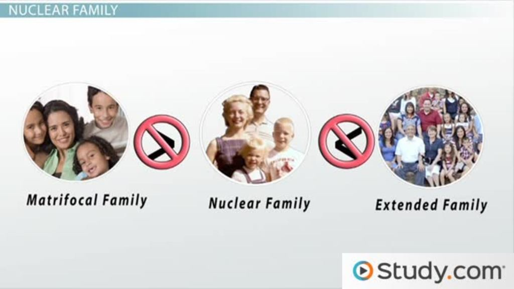 essay on nuclear and extended family 2 following us census bureau practice, the term family refers in this essay  of  a transition from extended to nuclear family structure than was ever expended.