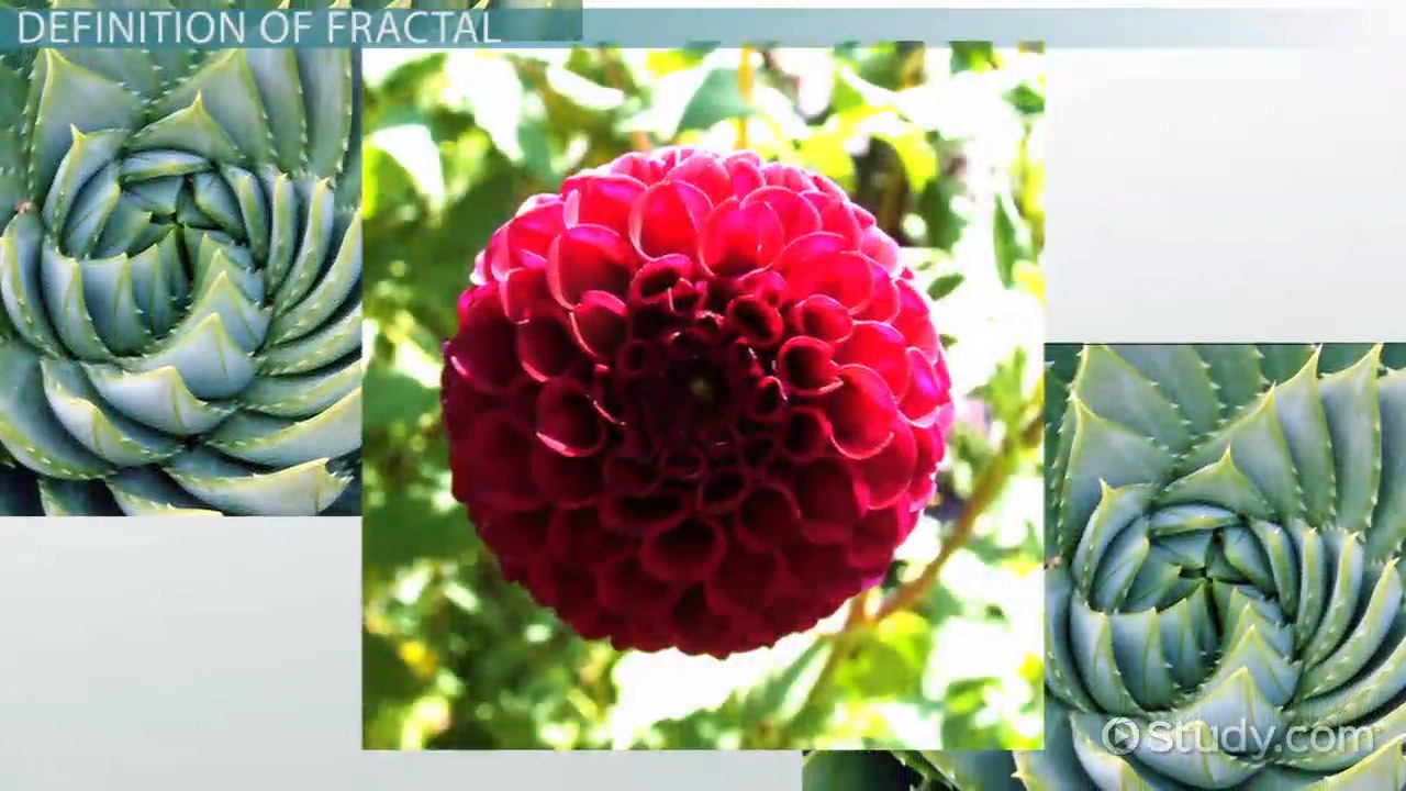 fractals in math  definition  u0026 description