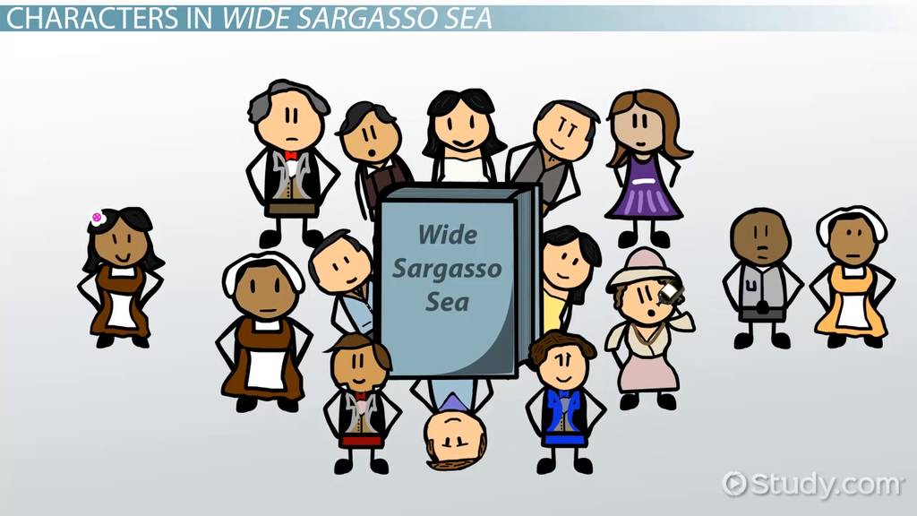 wide sargasso sea by jean rhys summary analysis characters  wide sargasso sea by jean rhys summary analysis characters video lesson transcript com