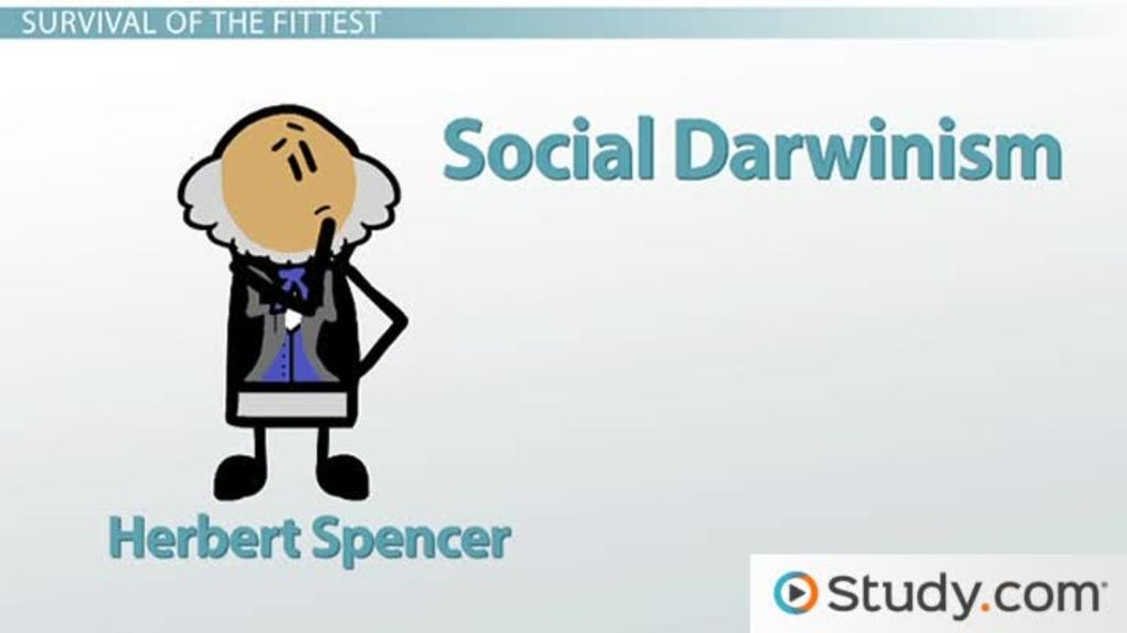 herbert spencer theory social darwinism video lesson  herbert spencer theory social darwinism video lesson transcript com