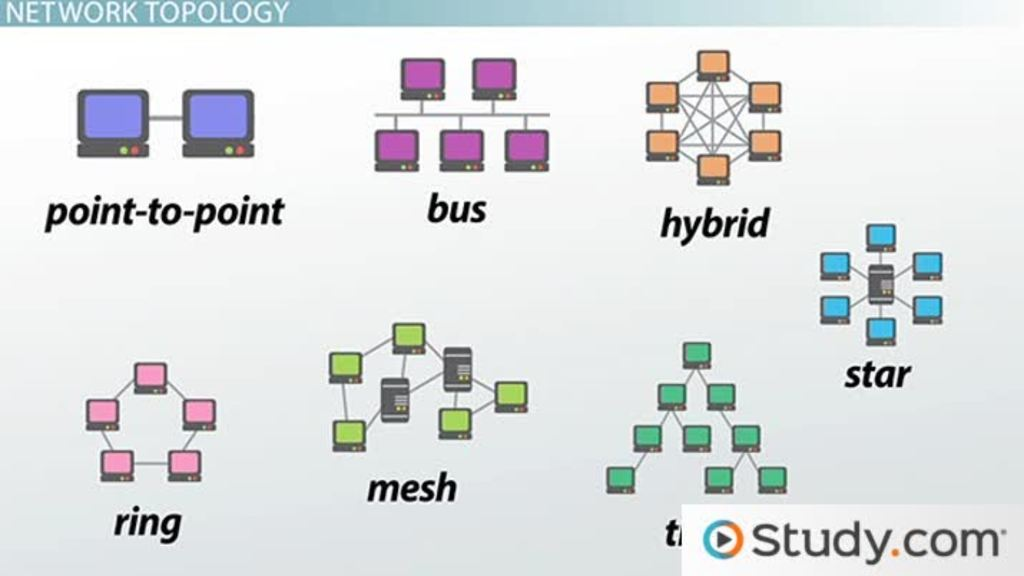 four network topologies image collections