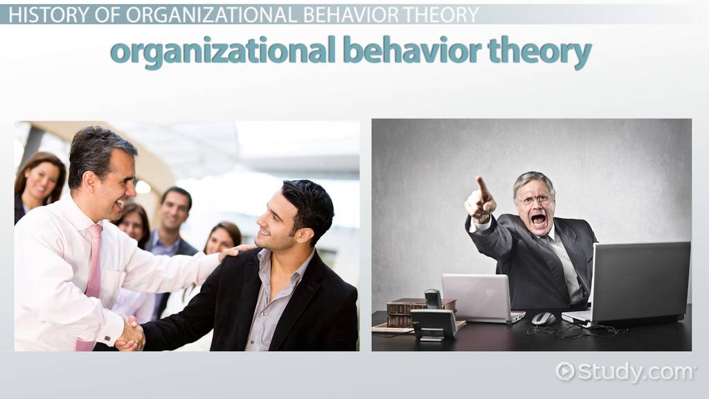 organizational behavior theory in business