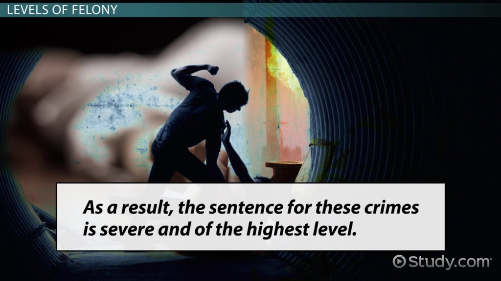 What Are Felonies?   Definition, Types U0026 Levels   Video U0026 Lesson Transcript  | Study.com