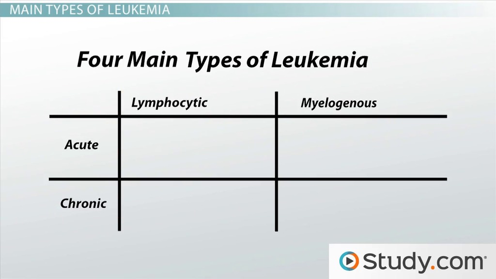 Leukemia: Location and Types - Video & Lesson Transcript | Study.com