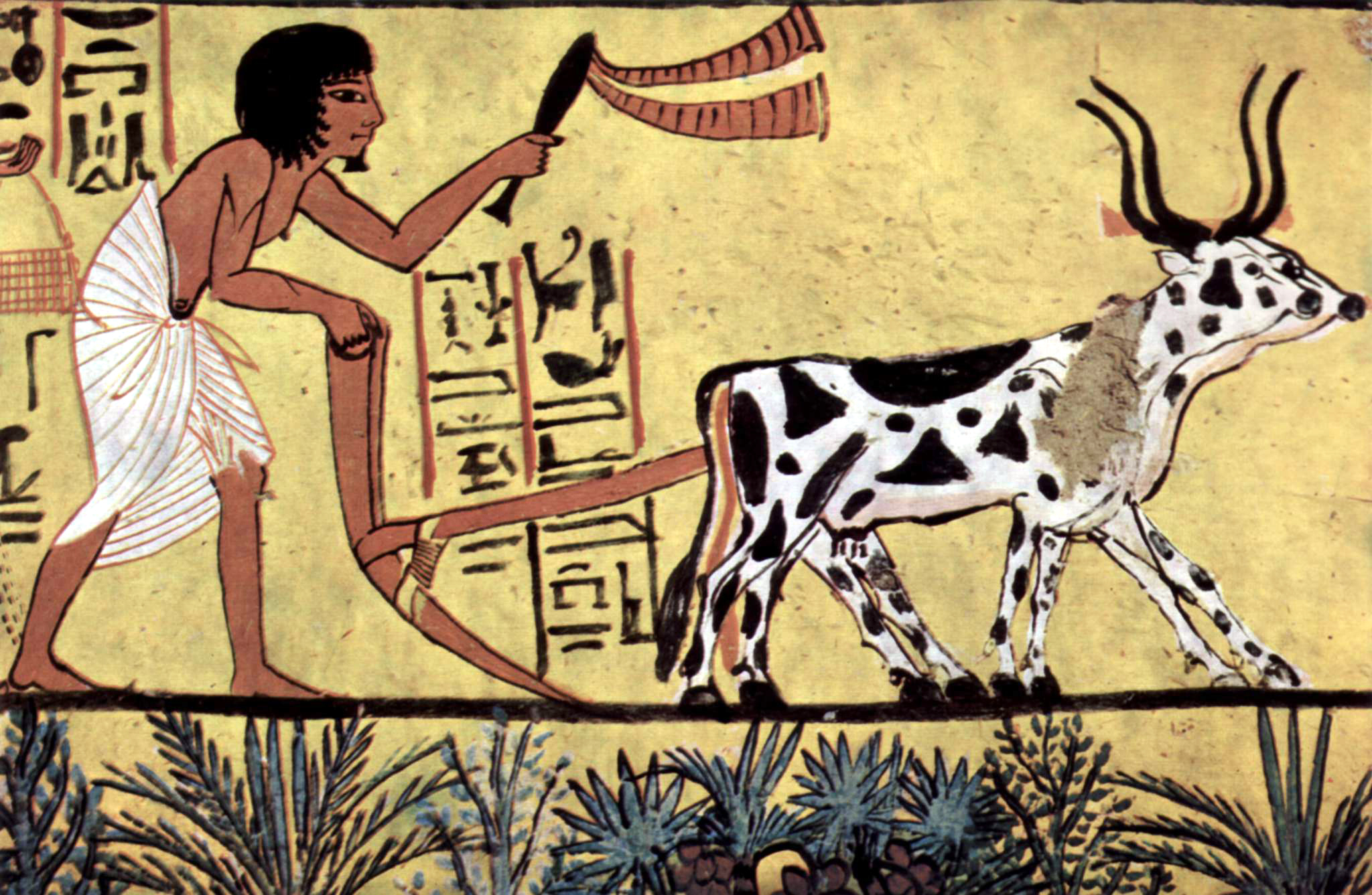 the agricultural revolution impacts on the environment video technologies of the neolithic era