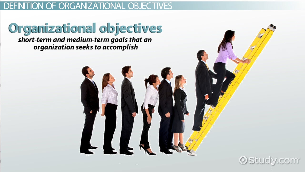 Organizational Objectives Definition Amp Examples Video