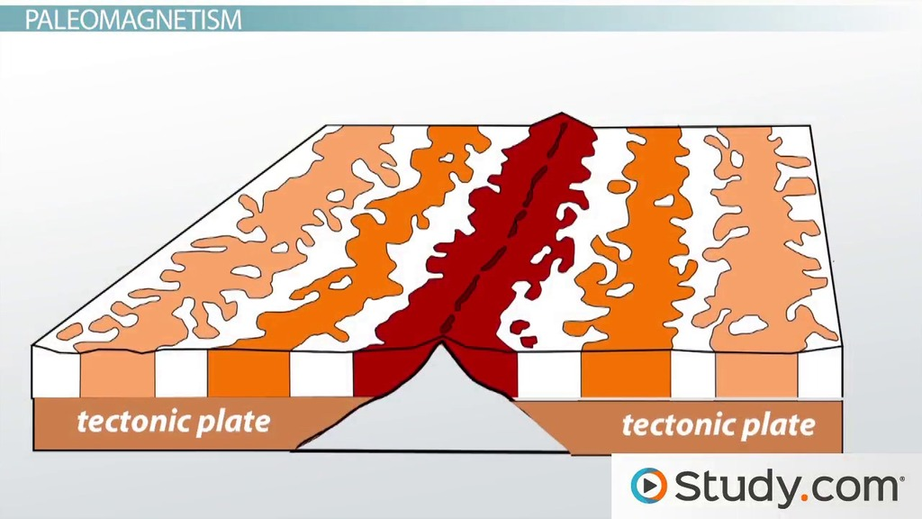 paleomagnetism and hot spots evidence for plate tectonics video  paleomagnetism and hot spots evidence for plate tectonics video lesson transcript com
