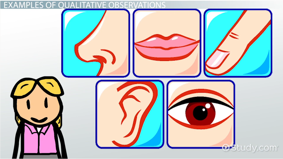 Qualitative observation scientific definition