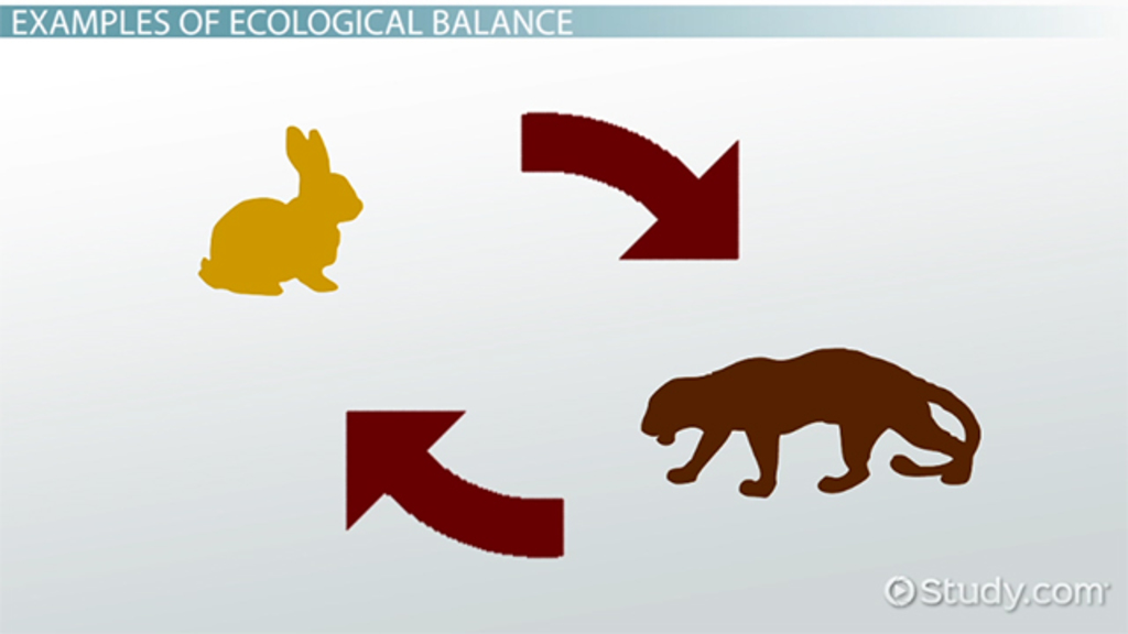 ecological balance Definition the condition of equilibrium among the components of a natural  community such that their relative numbers remain fairly constant and their.