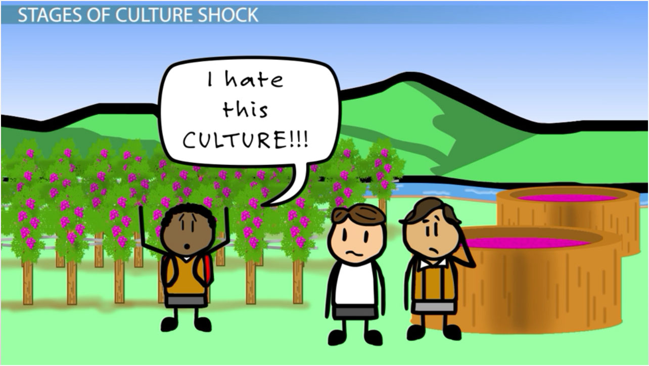 Culture Shock Definition Stages Examples Video Lesson