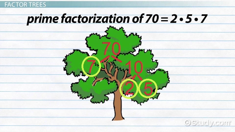 What Is Prime Factorization Definition Exles Video. What Is Prime Factorization Definition Exles Video Lesson Transcript Study. Worksheet. Worksheet Works Prime Numbers At Clickcart.co