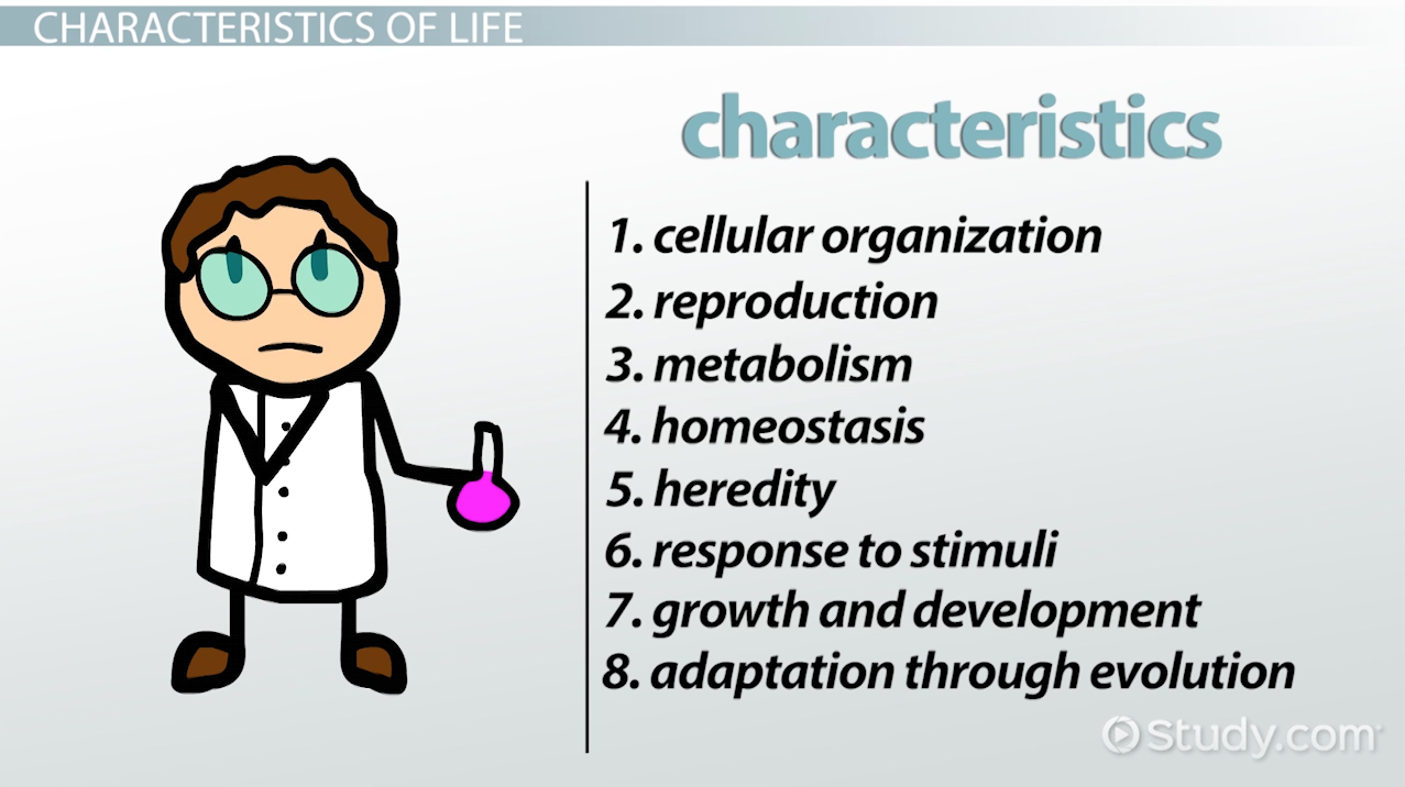 8 Characteristics of Life in Biology - Video & Lesson Transcript ...