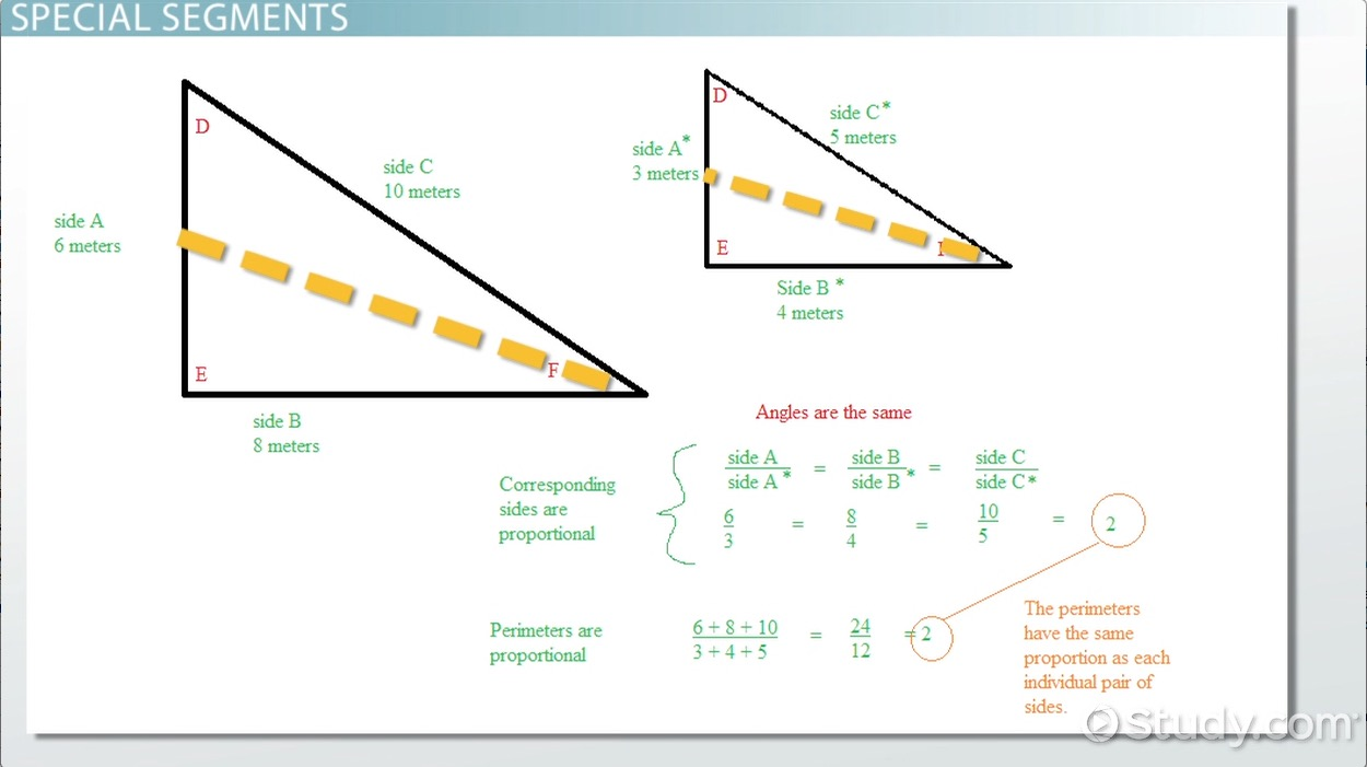 Median, Altitude, And Angle Bisectors Of A Triangle  Video & Lesson  Transcript  Study