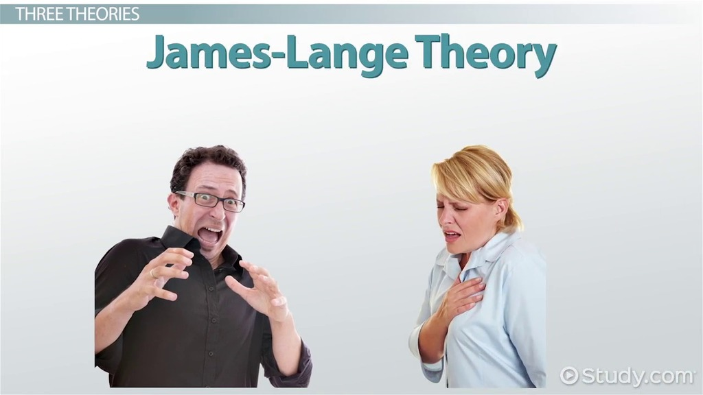 Cannon-Bard Theory Of Emotion: Example, Overview - Video ...