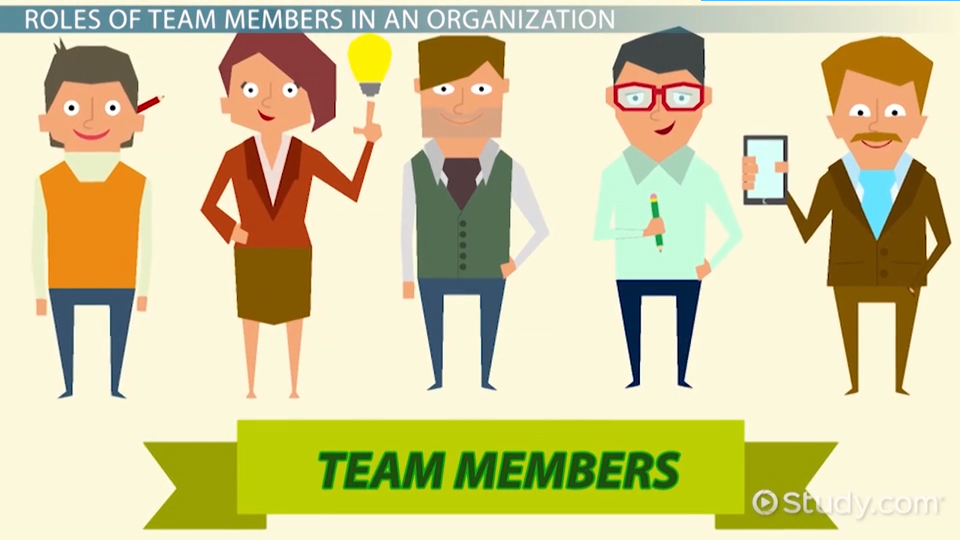 Team Members In An Organization: Roles, Responsibilities