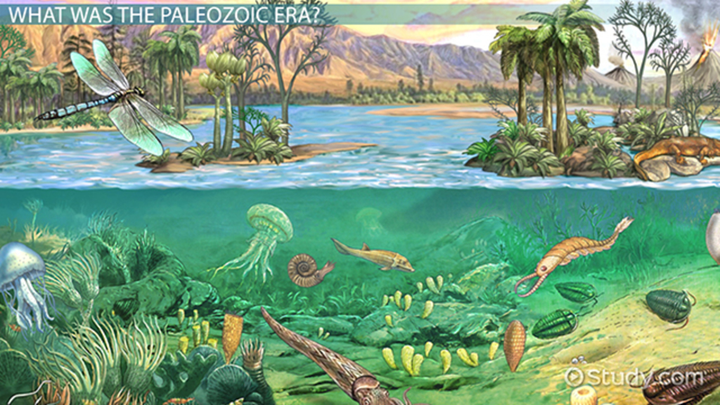 The Paleozoic Era: Definition, Timeline & Events - Video & Lesson ...