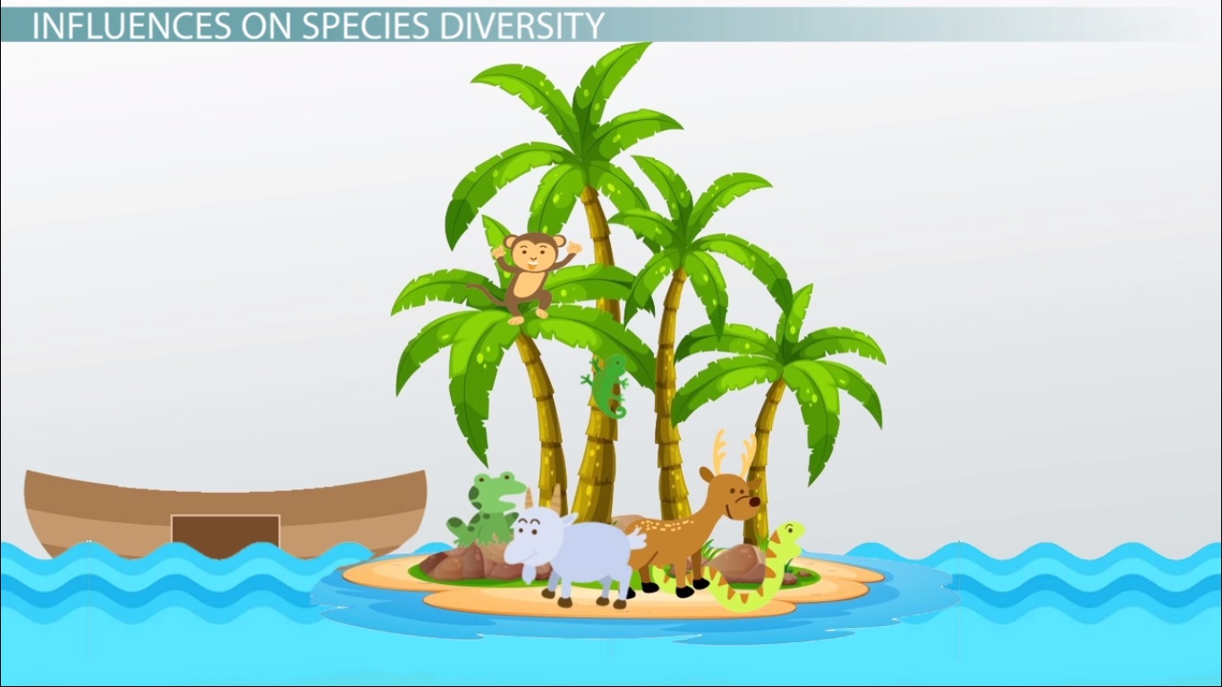 Island Biogeography Theory Definition & Graph Video & Lesson