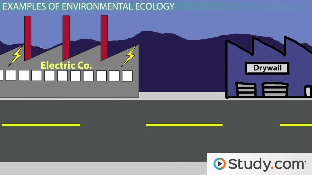 What Is Industrial Ecology