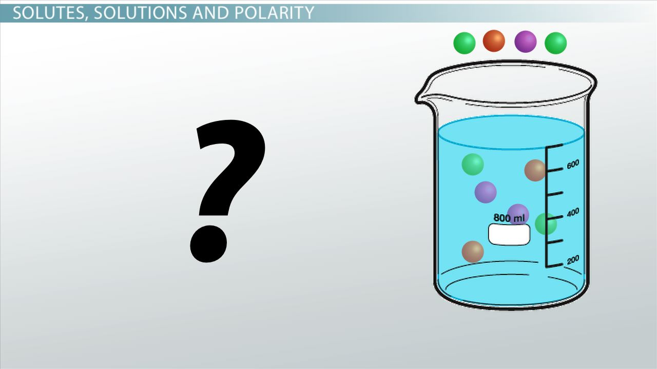 Unsaturated Solution Definition Examples Video Lesson