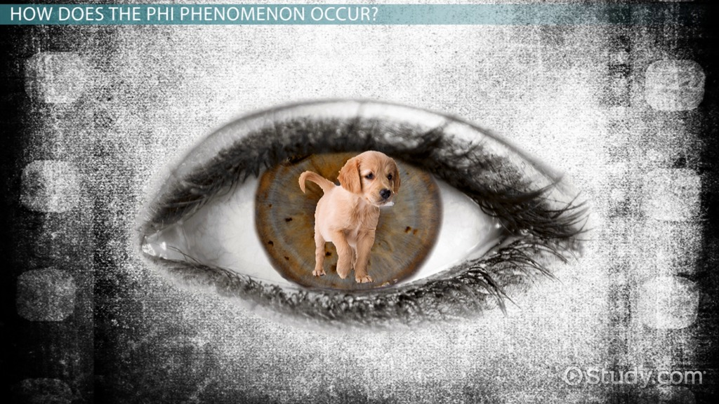 the phi phenomenon  definition  u0026 example
