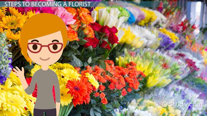 become a florist  education and career roadmap