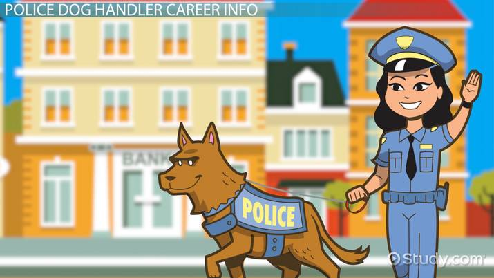 How To Become A Police Dog Handler Step By Step Career Guide