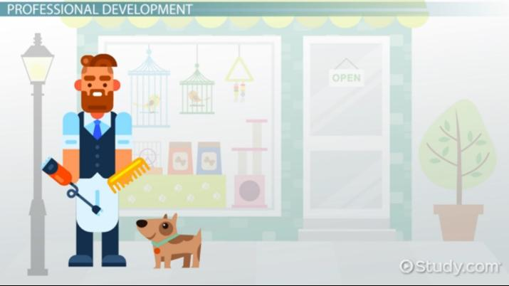 Pet Grooming Training Programs And Requirements