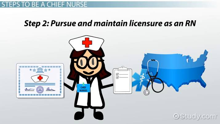 How To Become A Chief Nurse Step By Step Career Guide