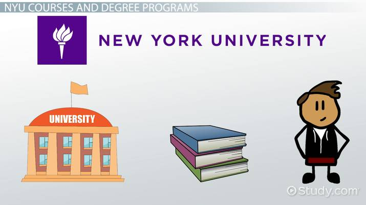 new york university courses and degree program options