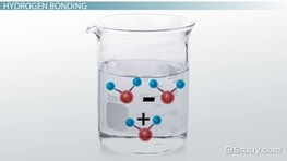 Facts About Water Molecules: Structure & Properties