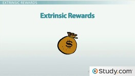 Reward Systems & Employee Behavior: Intrinsic & Extrinsic Rewards
