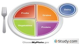 Healthy Diet Planning Guidelines: Nutrients & Food Groups