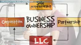 Organizational Structure & Ownership of a Business
