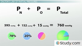 Dalton's Law of Partial Pressures: Calculating Partial & Total Pressures