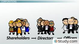 Shareholder, Board of Director & Officer Roles