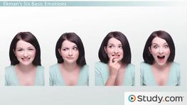 Categories of Emotion: 6 Basic Emotions, Oppositional Pairs & Biology