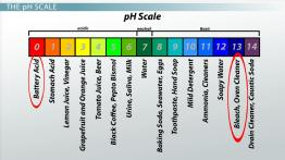 Acidic, Basic & Neutral Solutions: Determining pH