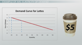 The Elasticity of Demand: Definition, Formula & Examples