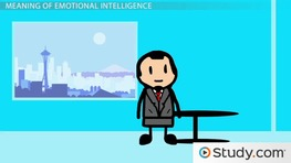 Emotional Intelligence in the Workplace: Definition & Meaning