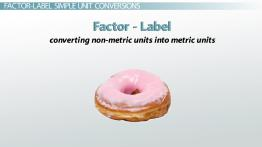 Factor-Label Method in Chemistry: Definition, Examples & Practice Problems