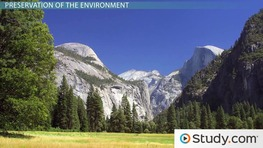 Environmental Conservation and Preservation: Definition, Differences & Advocates
